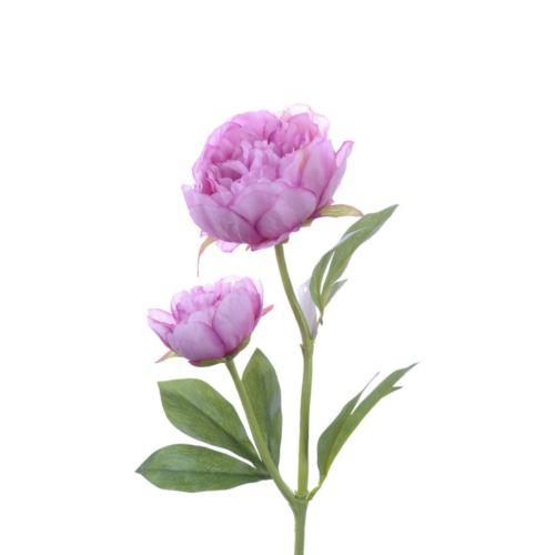 Peony x2 60 cm lavender