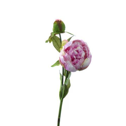 Peonia x2 53cm h.lila