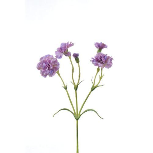 Goździk gałązka x5 62cm SUN405 dirty violet