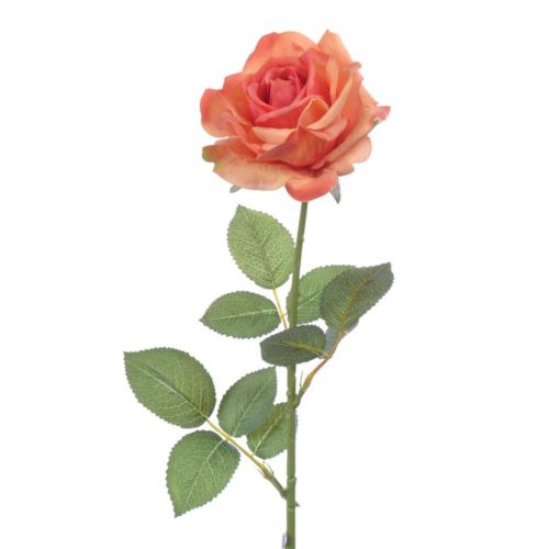 Rose x1 natural touch 68 cm orange