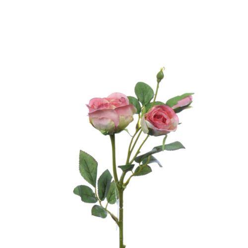 Rosenzweig x3 43 cm rose-gem