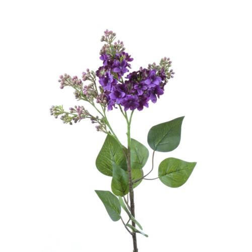 Bez x2 72cm sun301 dk violet