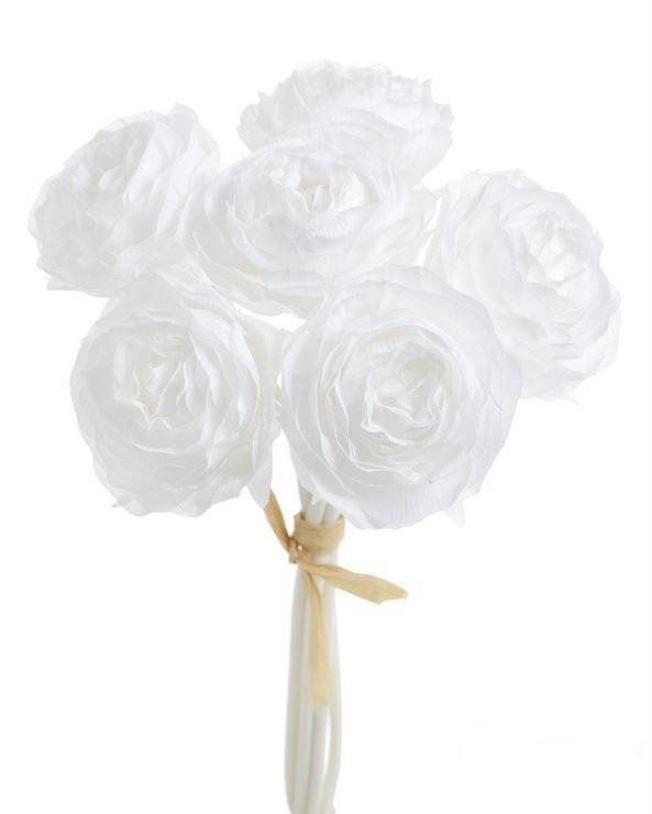 Bukiet ranunculus x6 81can15379 white