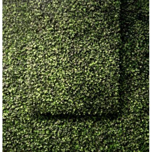 Mata z bukszpanu 40cm x 60 green