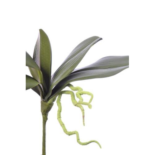 Liść do storczyka orchid leaves 32cm sun440