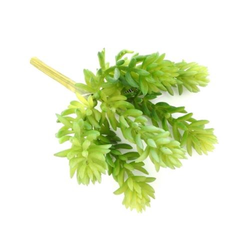 Prickly Succulent Pick x6