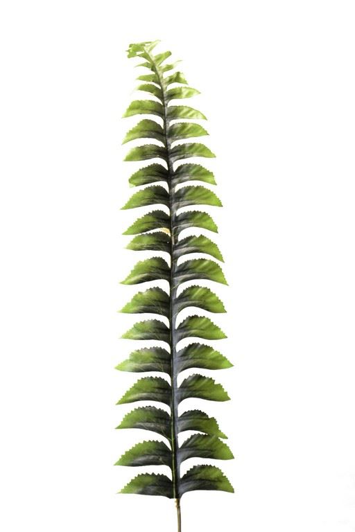 Liść paproci 55cm l566 green