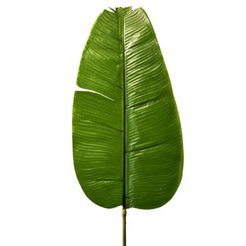 Liść bananowca 92cm r451 green