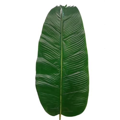 Liść bananowca 120cm r450 green