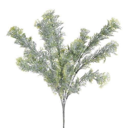 Artemisia galazka x5 39cm green