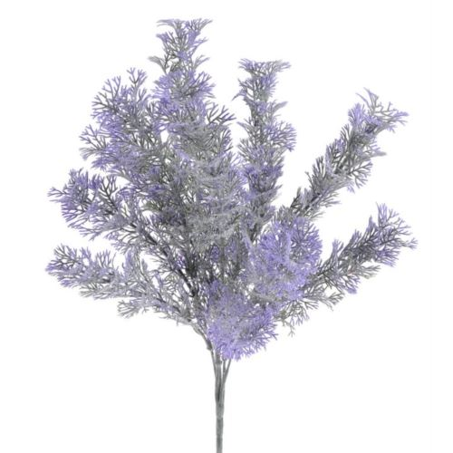 Artemisia galazka x5 39cm violet