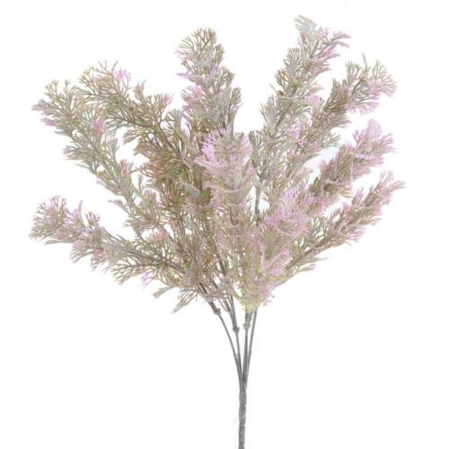 Artemisia galazka x5 39cm green pink