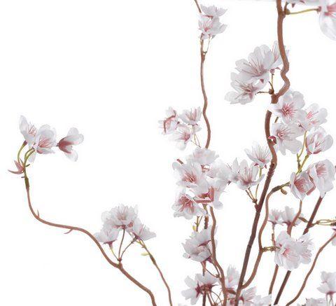 Galazka kwitnacej sakury 98cm