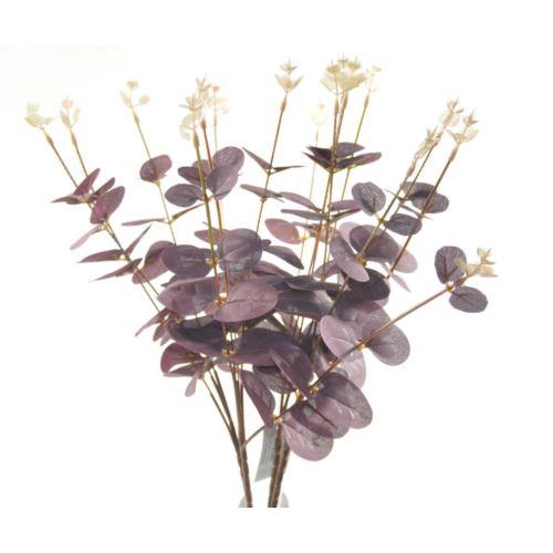 Eukaliptus bukiet x4 50cm burgundy