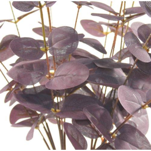Eukaliptus x4 -sztucz.rosl.