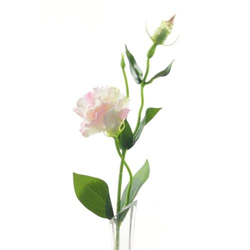 Eustoma spray x2 48cm sun357 2296 pearl pink