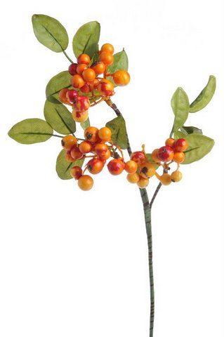 Borówka z owocami 36 cm 81can044 orange