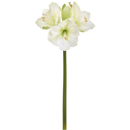 """Amaryllis x 4  75cm weiß-grün """"natural touch"""""""