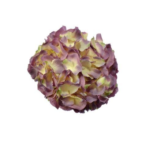 Hortensja wyr. 23cm h13 cm fiolet róż krem