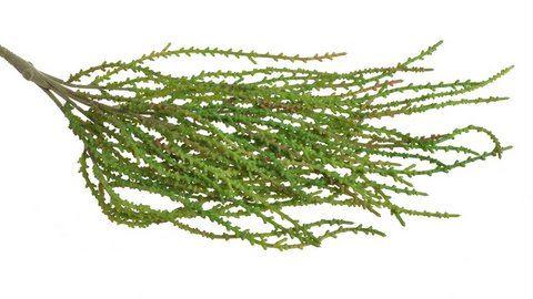 Sztuczna roslina 47cm
