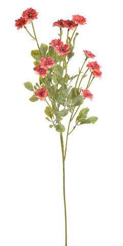 Galazka kwitnaca 81cm