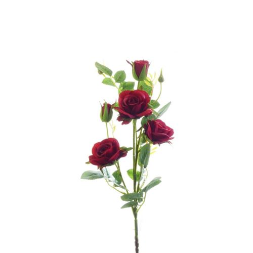 Róża ogrodowa drobna gałązka 72cm xh-29 12 red
