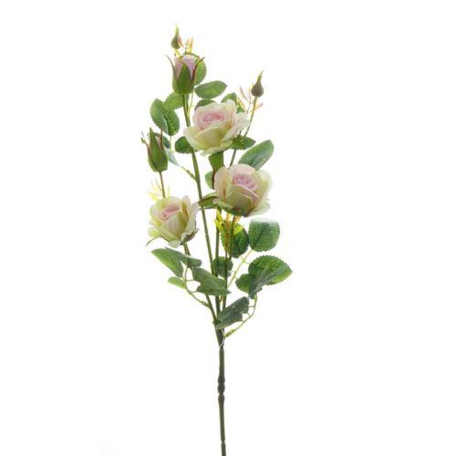 Róża ogrodowa drobna gałązka 72cm xh-29 4 cr-pk