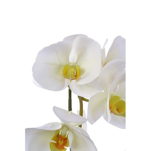 Orchid real touch 106 cm zb014 6