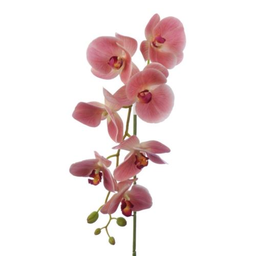 Storczyk Orchid real touch 106 cm zb014 4