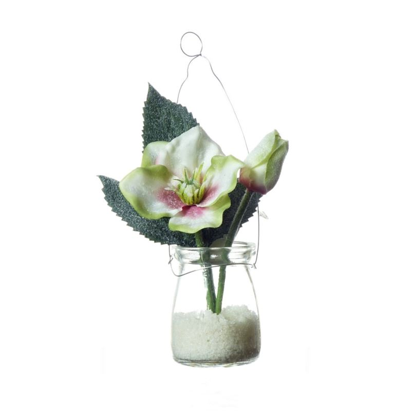 Helebore in hanging glasss cream/green