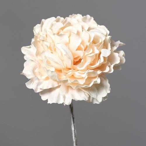 Peonia with Ice 12cm 54 cm cream