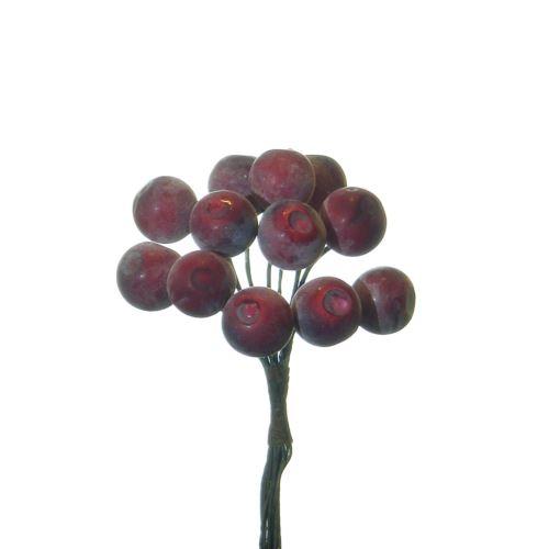 Pęczek owoców jagody red