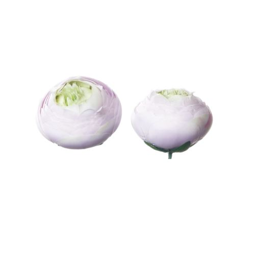 Pełnik- Ranunculus head 6cm L3