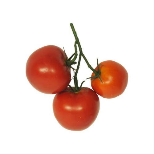 Tomato pick red 18cm