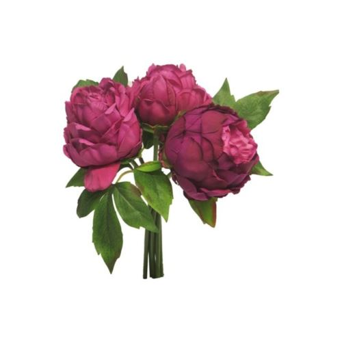 Peonia duke bundle beauty 29cm