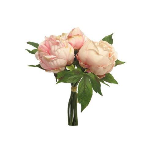 Paeonia duke bundle pink 29cm