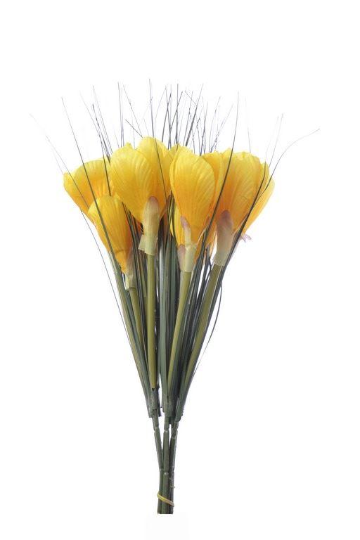 Krokus x2 /0548 Yellow