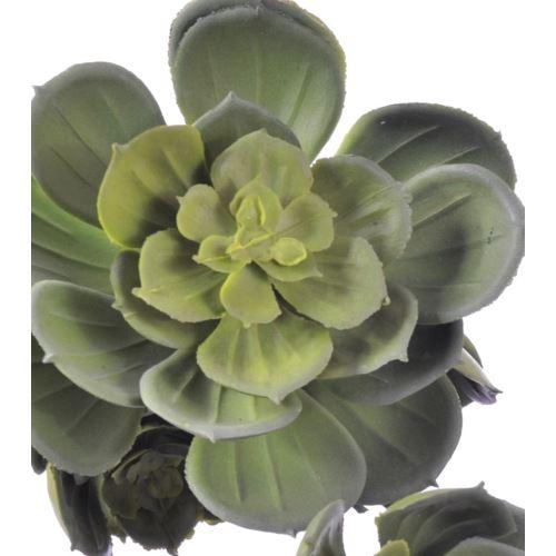 Sukulent x7 zwis zm014 32 cm    green