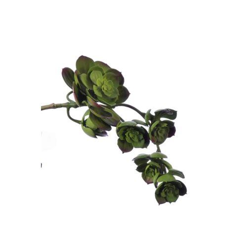 Sukulent x7 zwis zm014 32 cm    green  burgundy