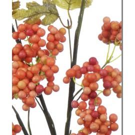 Gałązki z owocami