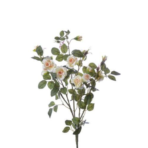Róża gałązka drobna sun103 cream salmon