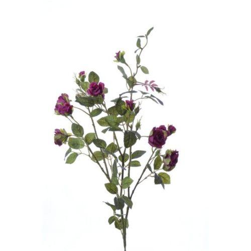 Róża gałązka drobna sun103 fuchsia