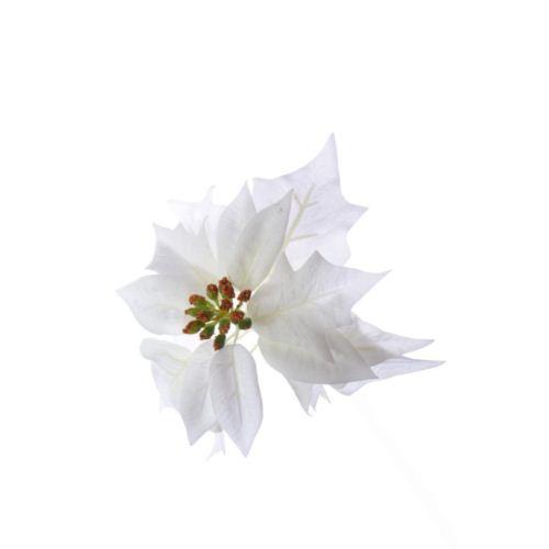 Poinsecja - Poinsettia velvet head ./1397 white
