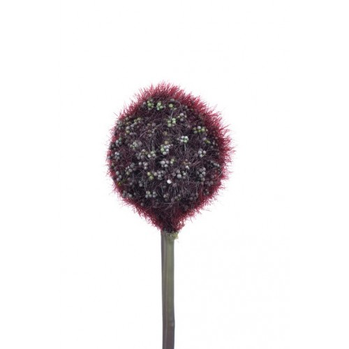 Allium Arles burgundy small 48cm