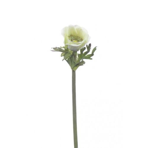 (Best) Anemone Dalton green 36cm