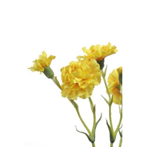 Goździk gałązka x5 62cm SUN405 yellow