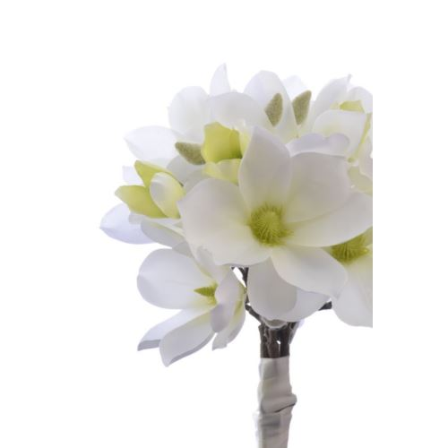Magnolia bukiet wiązana 40cm SUN489 1604 white