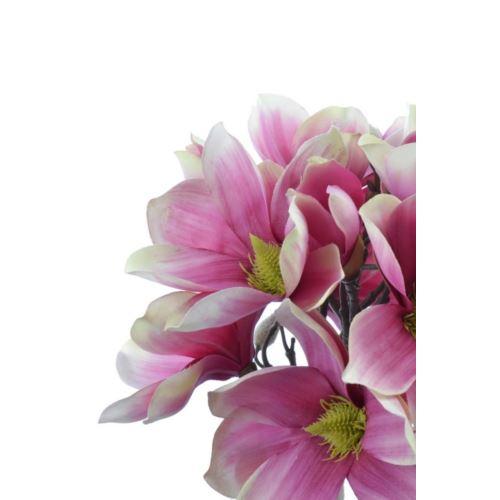 Magnolia bukiet wiązana 40cm SUN489 867a pink
