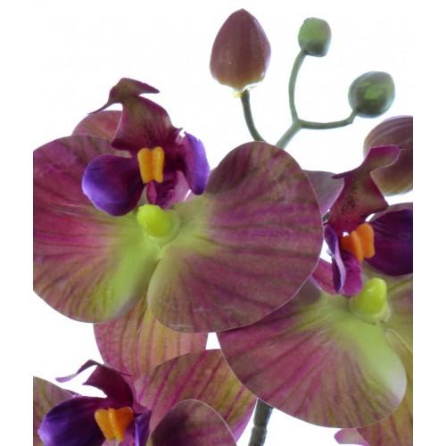 Orchid spray x3 in moss mud 41cm bur-gr