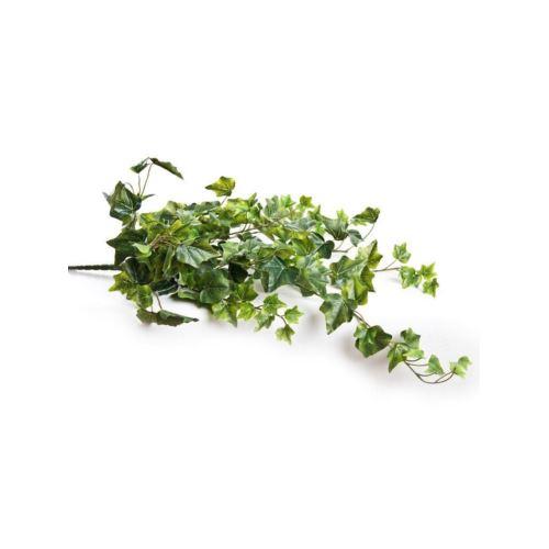 Bluszcz hedera 75 cm natural bl00626 green